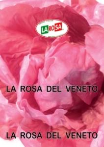 10560La Losa Del Veneto