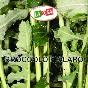 Broccolo Fiolaro